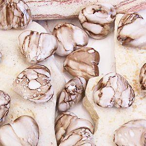 Perlenset acryl Herzen 10 Herzperlen 20 mm beige sand