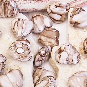 Perlenset acryl Herzen 10 Herzperlen 20 mm baige sand